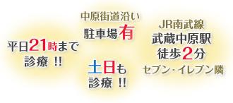 平日21時まで診療!!土日も診療!!JR南武線武蔵中原駅徒歩2分仲原街道沿い